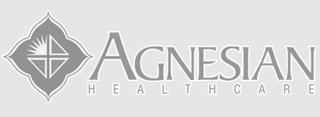 Agnesian Healtcare